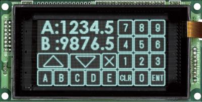 GU256X128C-D903M