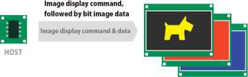 Memory for Image Data